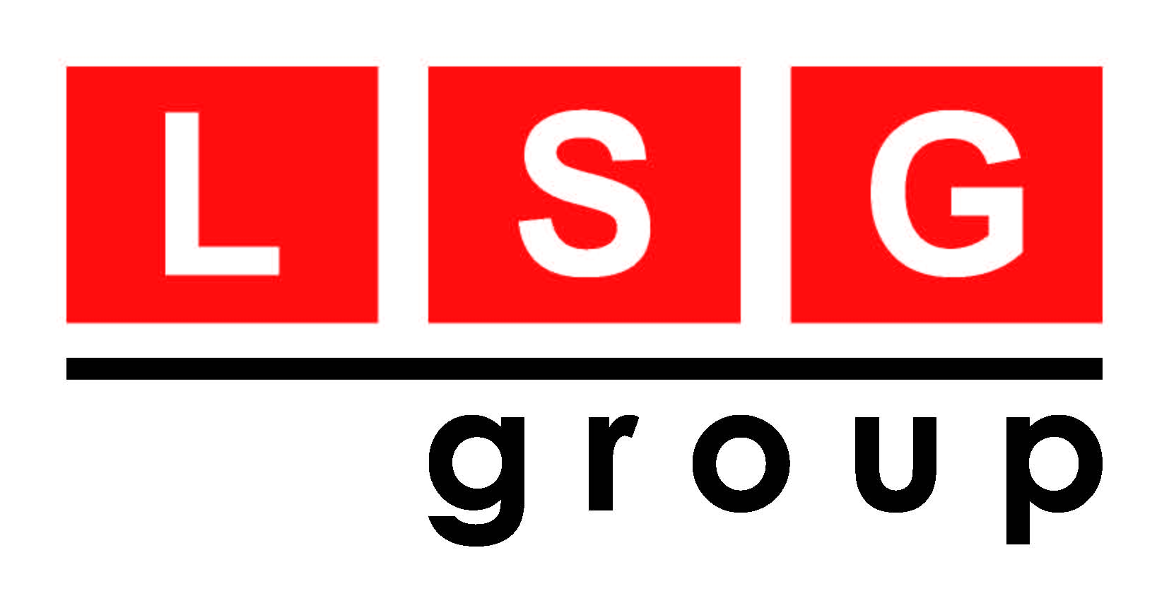 lsg_group-logo_LR.jpg
